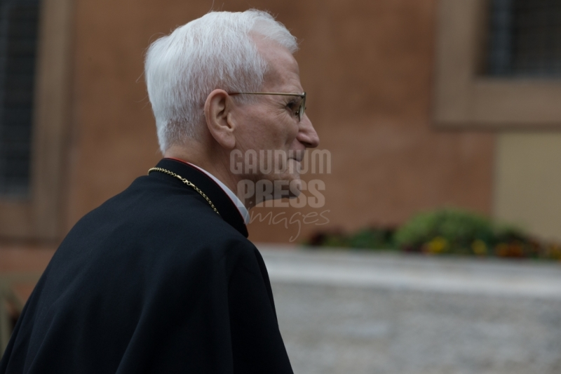 Vatican City : Cardinal Raffaele Farina - VII general congregation of Cardinals before the election of Pope Francis. Photo: Gustavo Kralj/Gaudiumpress