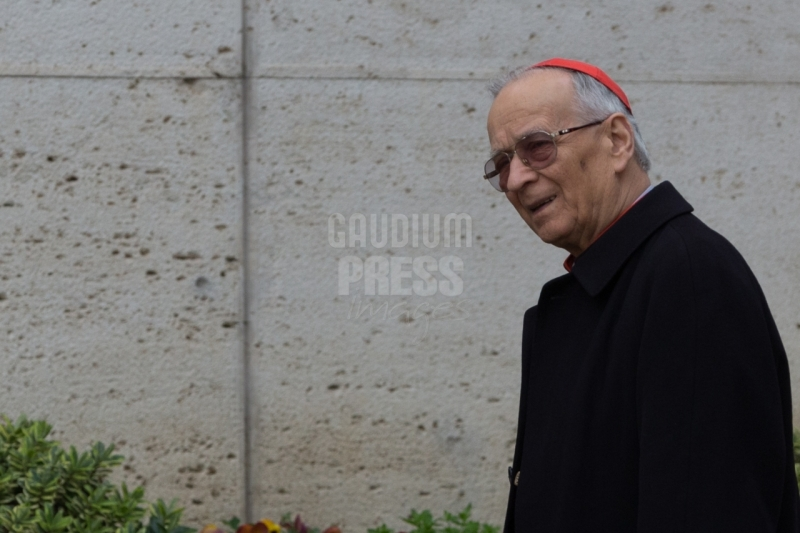 Vatican City: Cardinal Fernando Filoni - IX Congregation of Cardinals before the election of Pope Francis. Photo: Gustavo Kralj/GaudiumpressImages