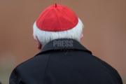 Vatican City: Cardinal Cañizares from Spain