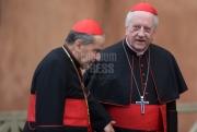 Cardinal Franc Rode