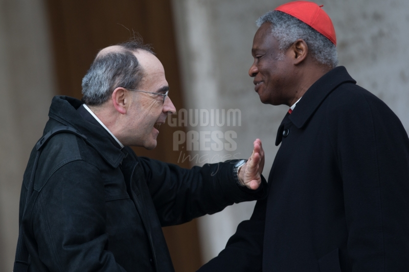 Rome Cardinals Turkson and Barbarin -