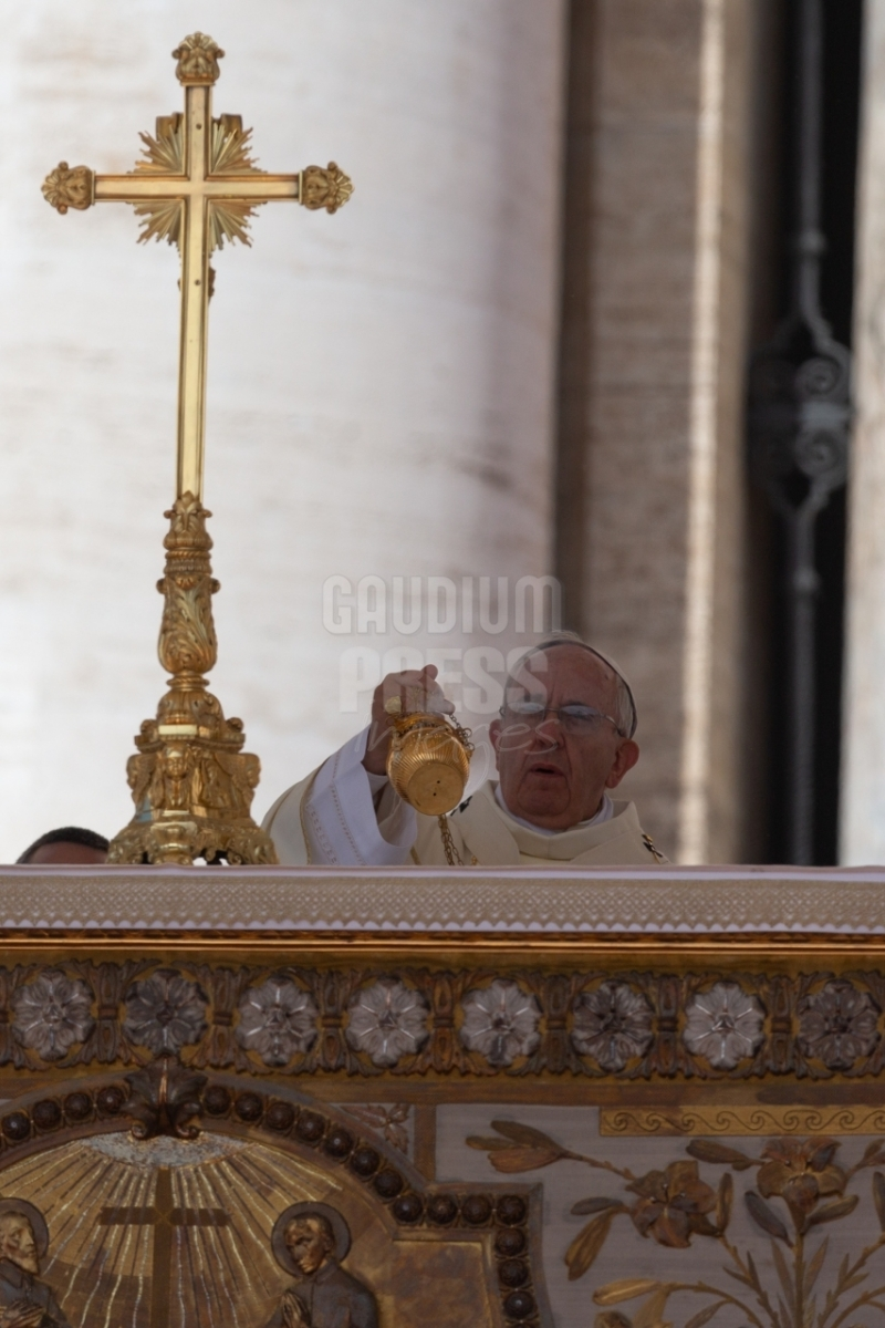 Vatican City: Pope Francis Mass  17-05-2015 - Papa Francesco Messa Piazza San Pietro Citta del Vaticano . ©Gustavo Kralj/GPImages